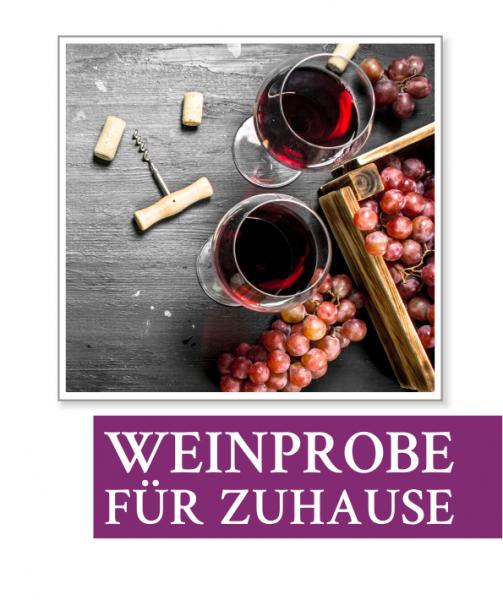 Weinprobe für Zuhause
